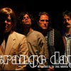 Strange Days: A Tribute to The Doors