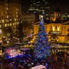 Portland Christmas Holiday Tree