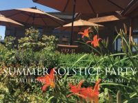 Adelsheim Winery's Summer Solstice Party