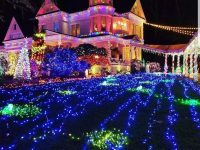 Victorian Belle Million Lights