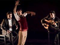 World-Renowned Flamenco Dancer Jesús Carmona