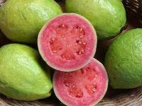 Cinco de Mayo Guava release with La Familia Cider
