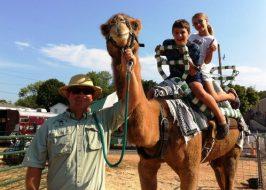 multnomah county fair