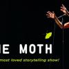 the moth banner