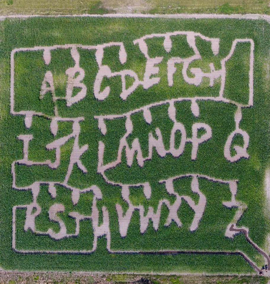 Portland Haunted Corn Maze @ Bella Organic Pumpkin Patch   Inspired ...
