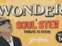 Wonder Soul Stew