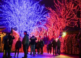 https://www.oregonlive.com/expo/life-and-culture/erry-2018/12/cb0e08415f580/the-15-best-holiday-light-disp.html