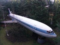 airplane in the woods