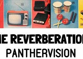 The Reverberations //Panthervision @Bones!