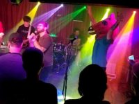 Brown Stallion *Ween Tribute* at the Goodfoot