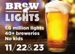 Brewlights_Ad_300x250_2019
