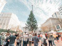 PORTLAND CHRISTMAS TREE