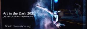 art in the dark 2021